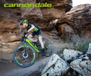 cannondale rog joma box 4