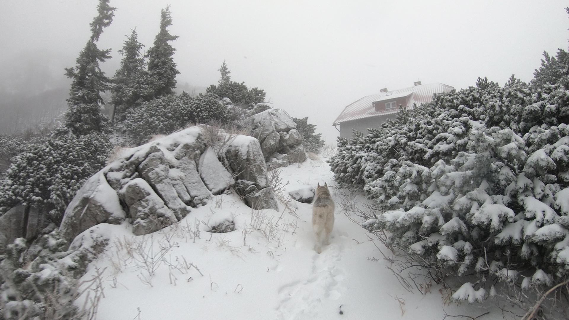 Risnjak Hut Croatia.jpg (1.25 MB)