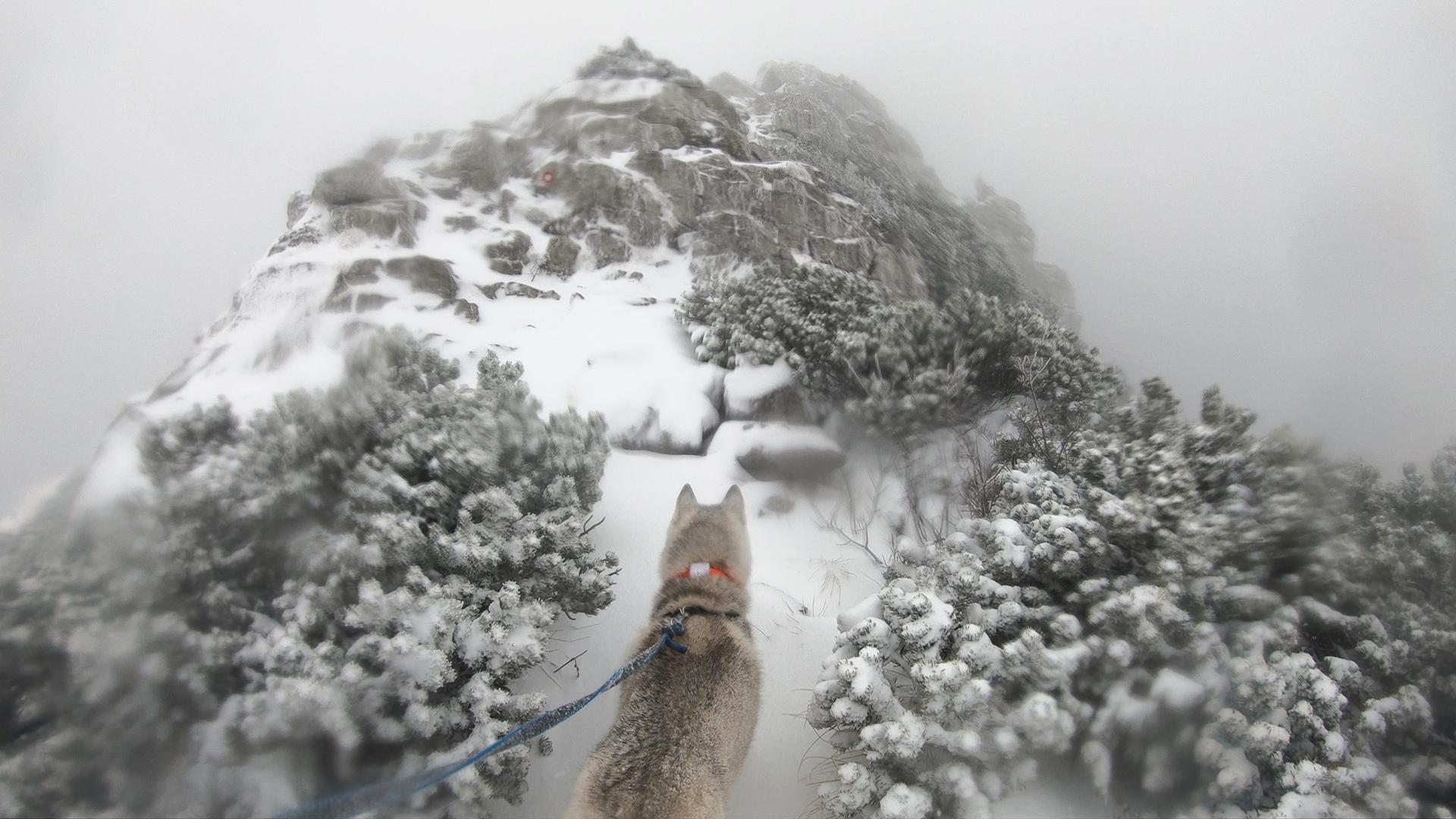 Risnjak Winter Peak Croatia Hiking.jpg (1.13 MB)