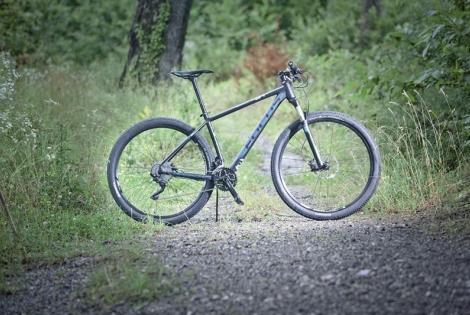 Focus Black Forest 29R 2.0